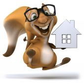 Fun squirrel with house — Stock Photo