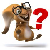 Fun squirrel with question mark — Stock Photo