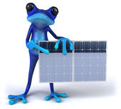 Frog with solar panel — Stock Photo