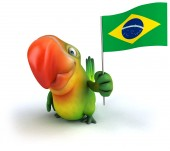 Parrot with Brazil flag — Stock Photo