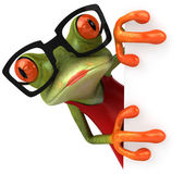 Frog with board — Stock Photo