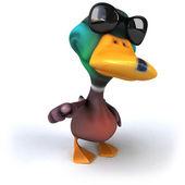Duck in sunglasses — Stock Photo