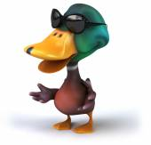 Duck in sunglasses — Foto Stock