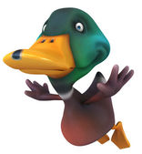 Eğlenceli bir ördek — Stok fotoğraf