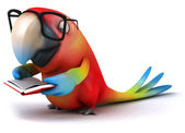 Parrot with book — Stock Photo