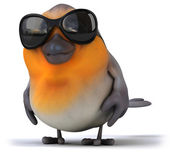 Robin  with sunglasses — Foto Stock
