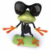 Frog with skateboard — Foto de Stock