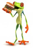 Frog with hamburger — Stock Photo