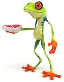 Frog with steak — Stockfoto