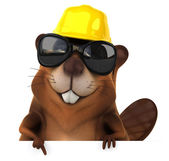 Fun beaver in sunglasses and hard hat — Foto Stock