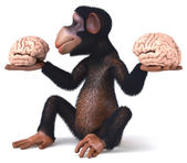 Fun monkey with brains in hands — Stock Photo