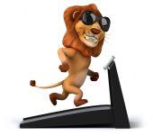 Fun lion on treadmill — Stock fotografie