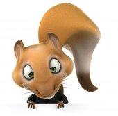 Fun business squirrel — Stock Photo