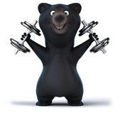 Fun bear  with  dumbbells — Stockfoto