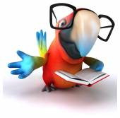 Fun parrot    with book — Stock Photo