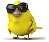 Fun cartoon yellow bird — Stock Photo