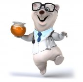 Fun bear doctor  in glasses — Stock fotografie