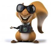 Kamera ile eğlenceli sincap — Stok fotoğraf