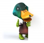 Fun cartoon duck — Stock Photo