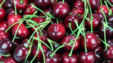 Fresh, ripe, juicy cherries. Rotate of clockwise. Loopable. HD 1080 — Stock Video