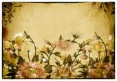 Grunge 花卉背景. — 图库照片