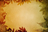 Grunge paper with leaves vignette. — Foto Stock