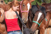 Girl and horses — Stock Photo