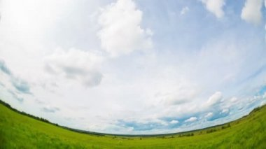 Timelapse clouds floating over the meadow — Stock Video