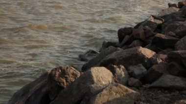 Beira-mar — Vídeo stock