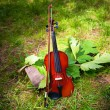 Violin on a grass and green leaves around — Stock Photo #62606107