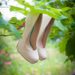 Womens shoes with high heels are hanging — Stock Photo #63331607
