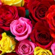 Roses background — Stockfoto #68167159