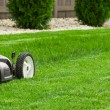 Lawn mower — Stock Photo #73589391