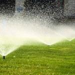 Garden sprinkler on the green lawn — Stock Photo #52564687