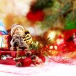 Christmas decoration on abstract background — Stock Photo #59052721