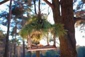 Handmade bird feeder in winter — Foto de Stock