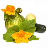 Pumpkin, squash and flowers with leaves  — Stock Photo