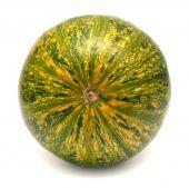 Ornamental squash  — Stock Photo