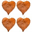 Collection of leaves heart — Stock Photo #55598937