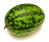 Watermelon isolated — Stock Photo