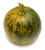 Ornamental squash  — Stock Photo