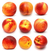Collection of peach  — Stockfoto
