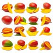 Collection of mango fruits — Stock Photo #58940029