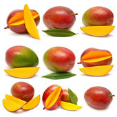 Collection of mango fruits — Stock Photo