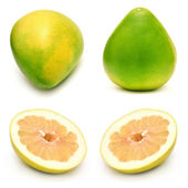 Pomelo fruit collection — Stockfoto