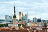 Tallinn City summer view — Stock Photo