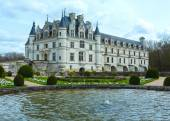 Chateau Chenonceau or Ladies Castle (France). — Zdjęcie stockowe