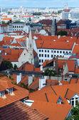 Bratislava City spring view (Slovakia) — Stock Photo