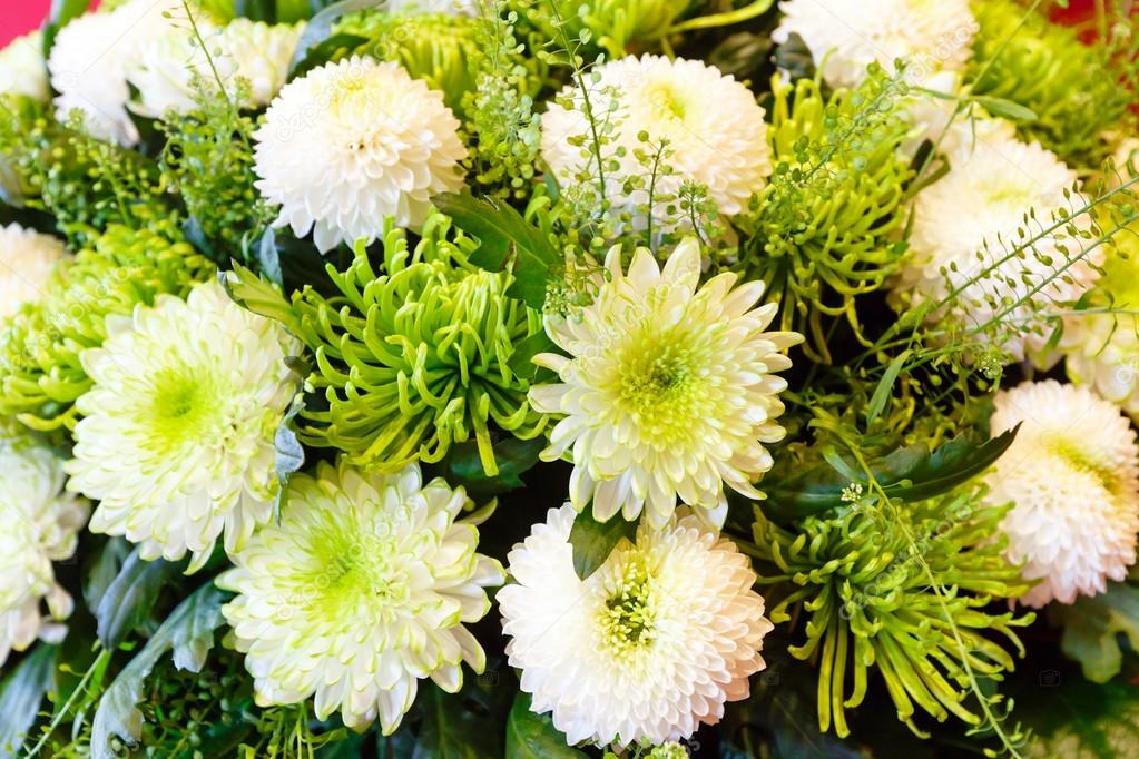 White chrysanthemum flowers bouquet — Stock Photo #66159088