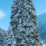 Winter mountain landscape (Austria, Tirol) — Stock Photo #69202089